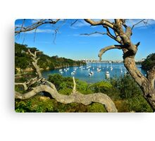Sirius  Cove Canvas Print