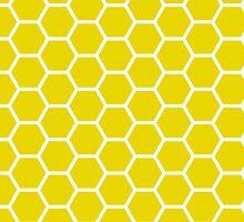 Hexagonal Jali Screen Pattern- India  by o2creativeNY