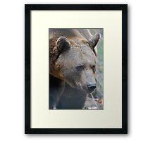Beauty in the Beast Framed Print