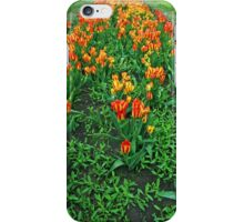 Orange Tulips iPhone Case/Skin