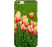 Orange yellow Tulips iPhone Case/Skin