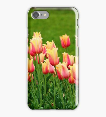Orange yellow Tulips iPhone Case/Skin