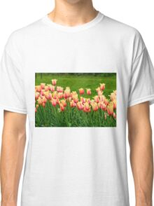 Orange yellow Tulips Classic T-Shirt