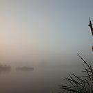 Misty Dawn II by Robert Kendall