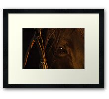 Sunset through Blackcat's eye Framed Print