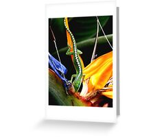 Anole on the Hunt! Greeting Card