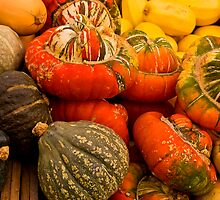 Colours Of Squash by sundawg7