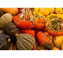 Colours Of Squash Photographic Print
