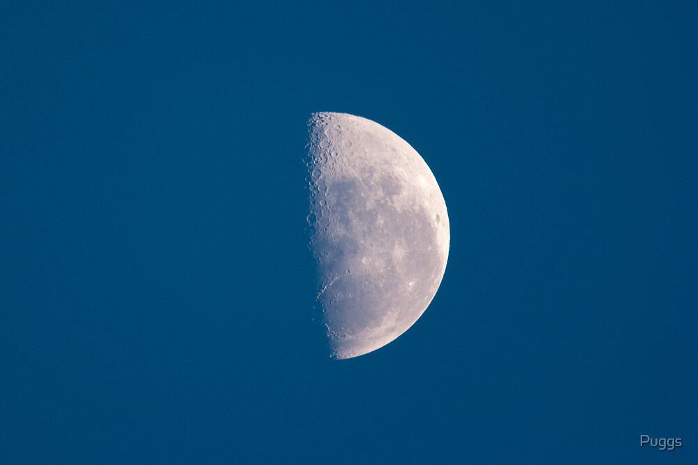Half Moon Raising by Puggs