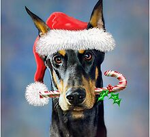 Doberman Christmas by bhymer