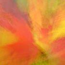 Firestorm by Gina Ruttle  (Whalegeek)