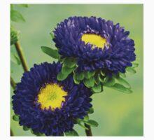 Purple Flowers Baby Tee