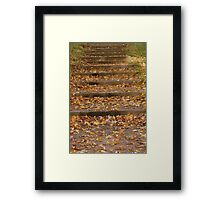 One Step At A Time Framed Print