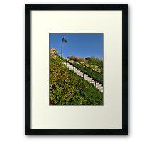 Lighting The Way ~ Langmoor-Lister Gardens Framed Print