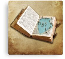 pocket pool Canvas Print
