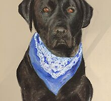 Max the Labrador  by Tracey Paterson