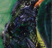 Humingbird 1 by AnitaJean