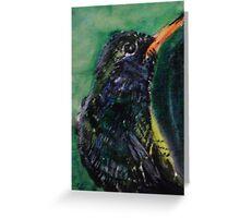 Humingbird 1 Greeting Card