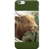 Moose  16 April 2015 iPhone Case/Skin