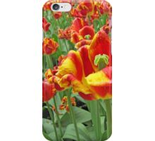 Square Yellow and Red Tulips iPhone Case/Skin
