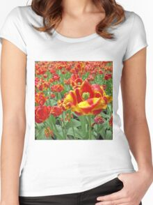 Square Yellow and Red Tulips Women's Fitted Scoop T-Shirt