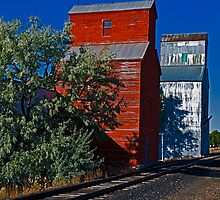 Grain Elevators of  Montana by Bryan D. Spellman