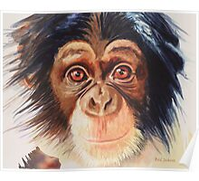 """Chimpanzee"" Watercolor Poster"