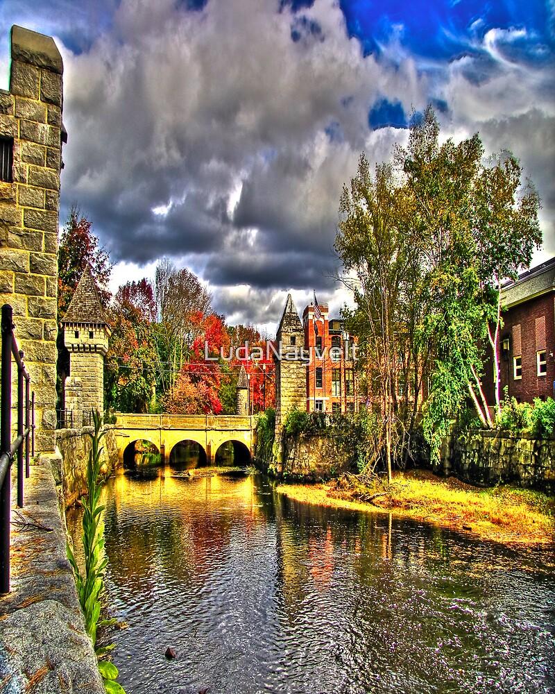 Pretty Bridge  by LudaNayvelt