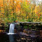 Wolf Greek Falls by julayneluu