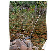 The River of Stillness Poster