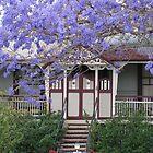 house in jacaranda St by betty porteus