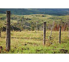 Warwick Fence Line © Photographic Print