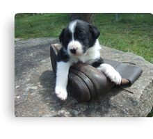 Pup and boot 3 Canvas Print