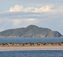 FINGAL BAY - PORT STEPHENS NSW AUSTRALIA by Bev Woodman