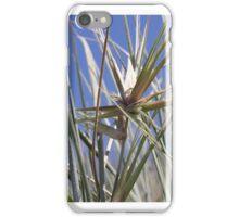 Spinifex & blue sky iPhone Case/Skin