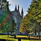 Autumn Morning - Winchester by NeilAlderney