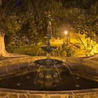 Fountain by night by shaynetwright