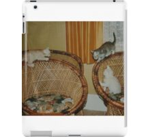 kittens iPad Case/Skin