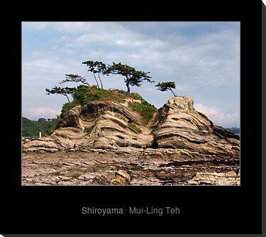 """""""Shiroyama"""" by Mui-Ling Teh"""