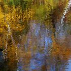 Autumn Abstract by Bill Morgenstern