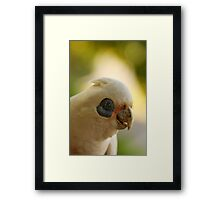 Looking for Sally Framed Print