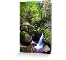 Guiers Vif in the Forest Greeting Card
