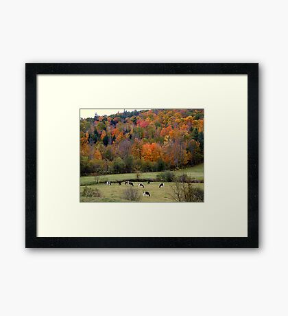 Fall in East Washington, NH Framed Print