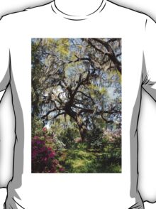 Beauty In The Trees T-Shirt