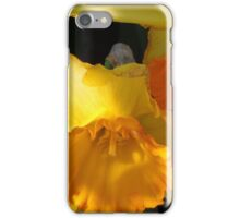 Daffodils...... iPhone Case/Skin