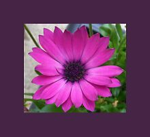 Perfect Pink Petals - Cape Daisy Close-up Womens Fitted T-Shirt