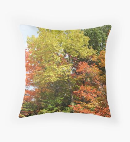 Colours on the Menu Throw Pillow