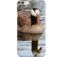 Mirror In The Lake iPhone Case/Skin
