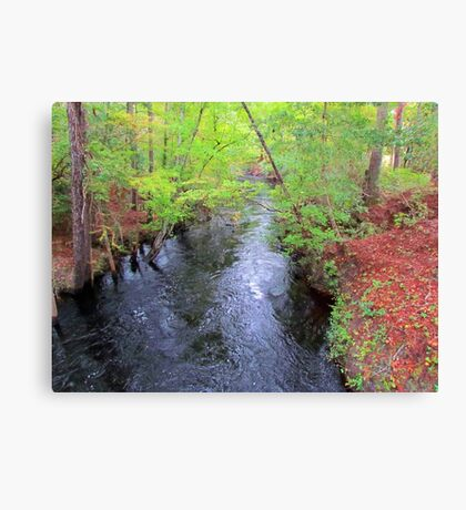 Creek In The Country Canvas Print