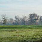 Frosty Park 2 by kirstyf